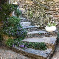 escalier-fleuri